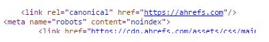 Link rel equals canonical, ahref equals ahrefs.com. Meta name robots, content equals no-index.